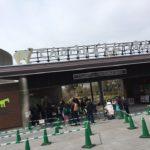 見なきゃ損!天王寺動物園、ジャガーのサービスがすごい(O_O)